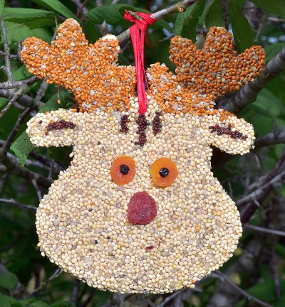 Rudolph Christmas Cookie Bird Seed Ornament Set of 12