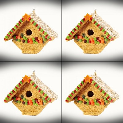 Fruit Casita Edible Birdhouse Set of 4