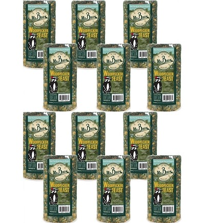 Woodpecker Feast Cylinder Small 30 oz. 12-Pack