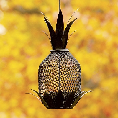 Pineapple Bird Feeder