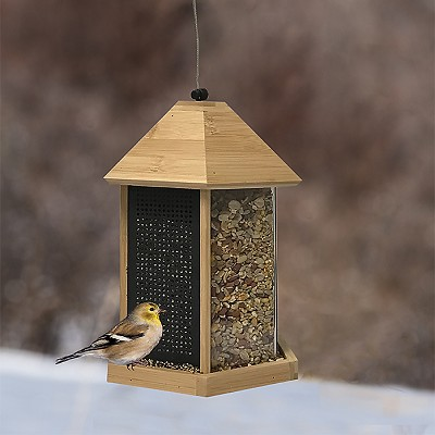Trio Bamboo Feeder