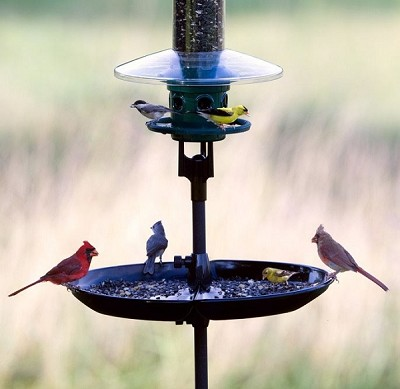 Brome Seed Buster Bird Seed Tray and Catcher
