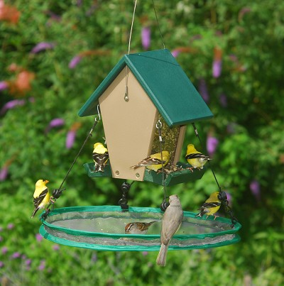 "Recycled Plastic Small Hopper Feeder with 16"" Seed Hoop"