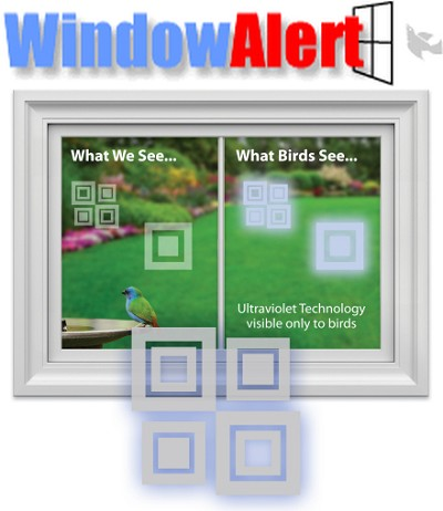 Window Alert Bird Collision Decal Modern Square 8/Pack