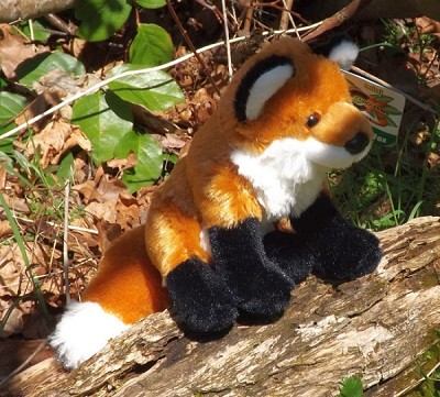 Cuddlekins Red Fox 8""