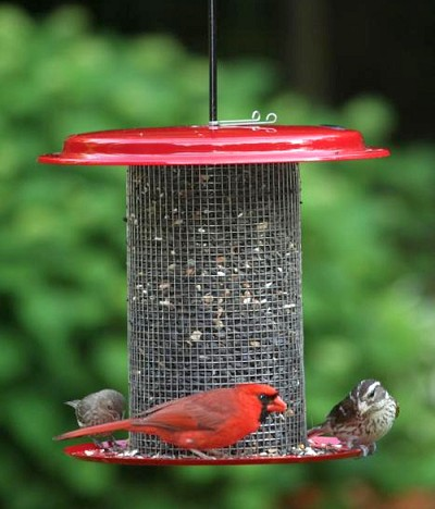 Magnet Mesh 5 Quart Metal Sunflower Feeder - Red