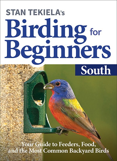 Birding For Beginners Guide South
