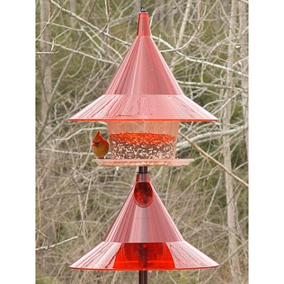 Sky Cafe Bird Feeder Ruby Red with Red Ruby Pole Baffle Kit