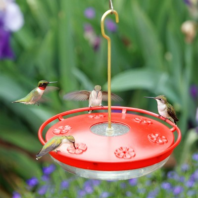 HummZinger HighView Excel 16oz. Hummingbird Feeder
