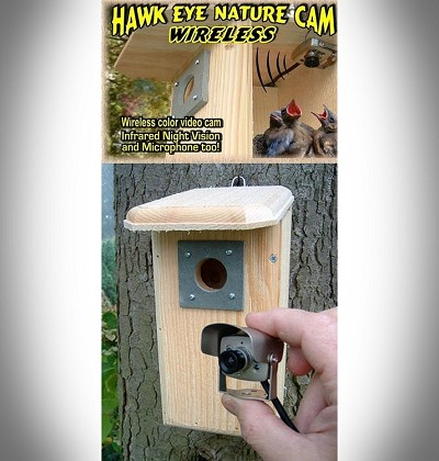 Backyard Birdhouse w/Wireless Hawk Eye Nature Video Camera