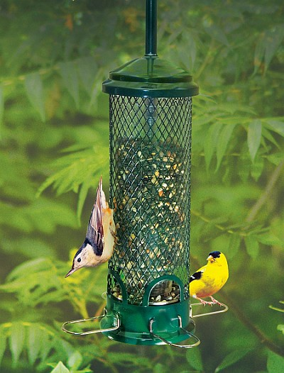 Squirrel Buster Mini Squirrel-Proof Bird Feeder
