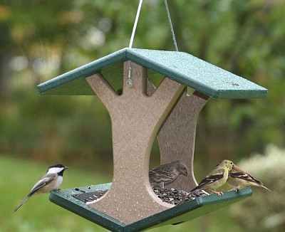 Birds Choice Recycled Plastic Hanging Fly-Through Bird Feeder