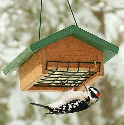 Recycled Plastic Single Upside Down Suet Feeder