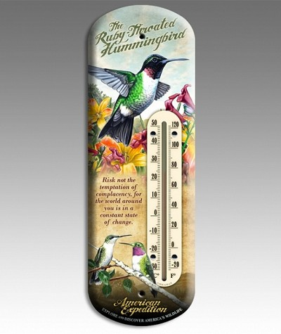 Hummingbird 3-D Tin Back Porch Thermometer