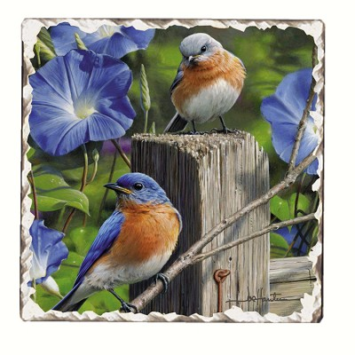 Bluebirds #3 Tumbled Tile Coaster Set of 4