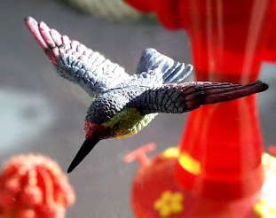 Hummingbird Fly-Thru Window Magnet