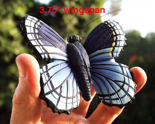 Blue Butterfly Fly Through Window Magnet