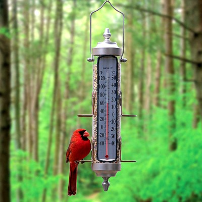 Conant Decor Grande View Bird Feeder Thermometer Satin Nickel 17.5""