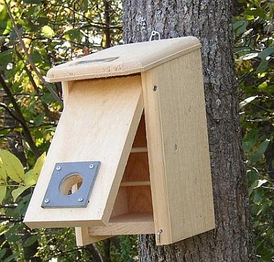 Nesting Box in Spring/Summer, Roosting Box in Fall/Winter