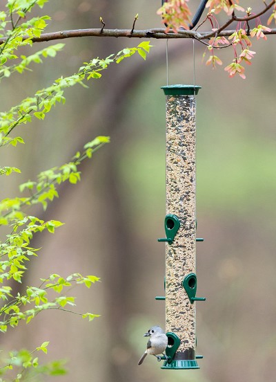 "Droll Yankees New Generation 23"" Sunflower Feeder Green"