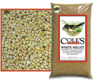 Cole's White Millet Bird Seed 10 lb.
