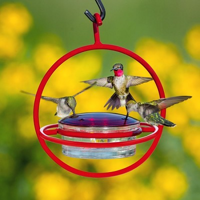 Sphere Hummingbird Feeder Red with Perch