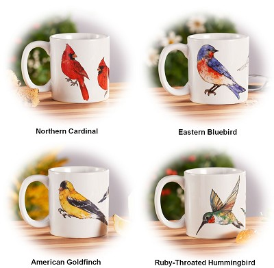 Field Guide Songbird Collection Ceramic Coffee Mug Set of 4