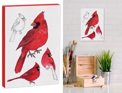 Field Guide 5x7 Canvas Male Cardinal