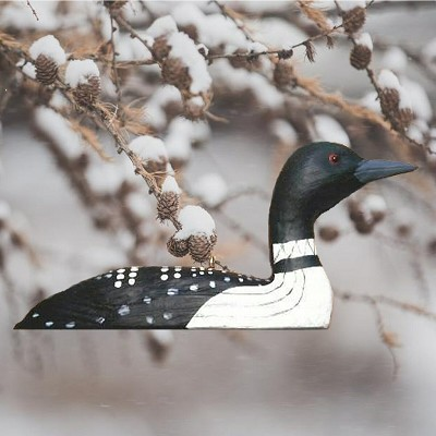 Common Loon Ornament