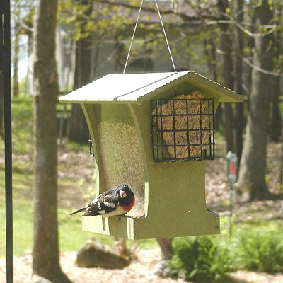Green Solutions Recycled Plastic 5 Qt. Tall Hopper Feeder w/Suet Cages