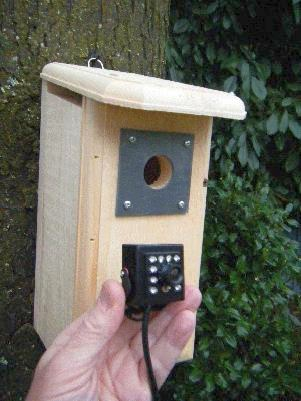 Backyard Birdhouse with High Definition (HD) Hawk Eye Nature Cam
