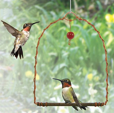 Provide your hummingbirds with a place to rest!