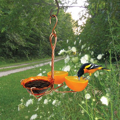 Copper Oriole Fruit & Jelly Feeder Single Cup