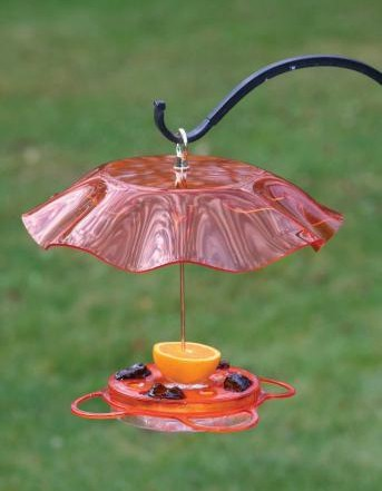 Translucent 12 oz. Oriolefest Oriole Feeder with Weather Guard