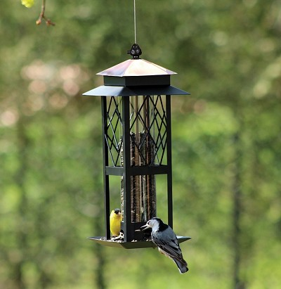 Chapelwood Regal Style Trellis Seed Tube Feeder