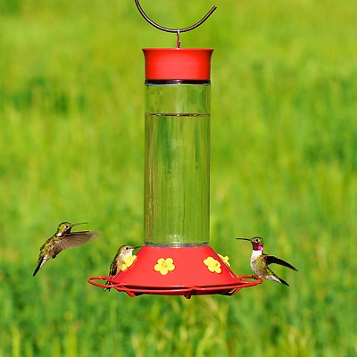 """Our Best"" Hummingbird Feeder 30 oz"