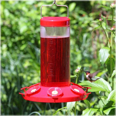 The Grand Master Hummingbird Feeder