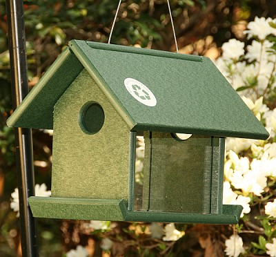 Recycled Plastic Mealworm Feeder Green