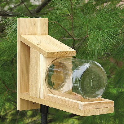 Cedar Squirrel Jar Feeder