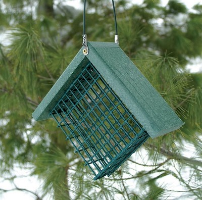 Recycled Plastic Suet Feeder Set of 2
