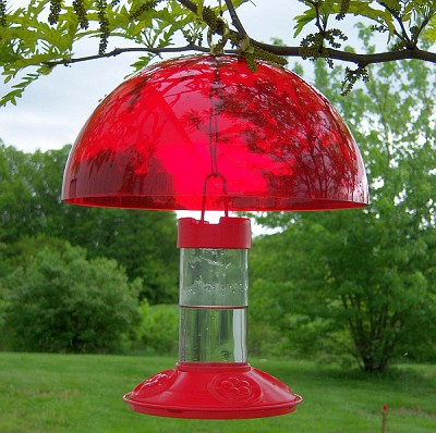 Hummer Helper Hummingbird Feeder Weather Dome