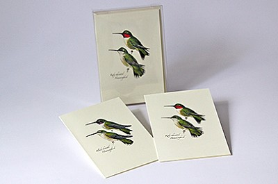 Peterson Hummingbird Boxed Notecard Assortment Set of 8