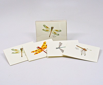 Dragonfly and Damselfly II Boxed Notecard Assortment Set of 8