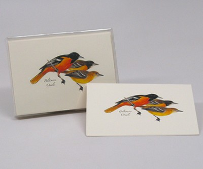 Baltimore Oriole Boxed Notecard Assortment Set of 8