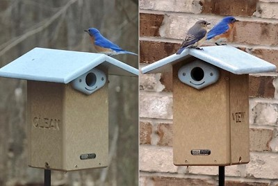 Recycled Plastic Ultimate Bluebird House Package w/Complete Pole Kit