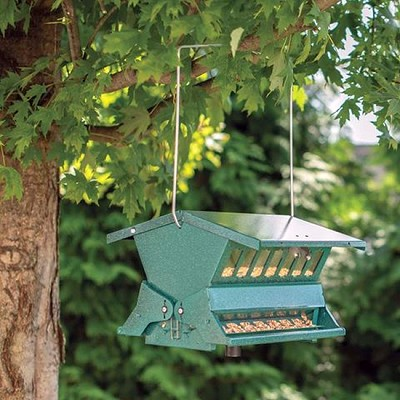 Absolute Hanging Squirrel Proof Bird Feeder Green