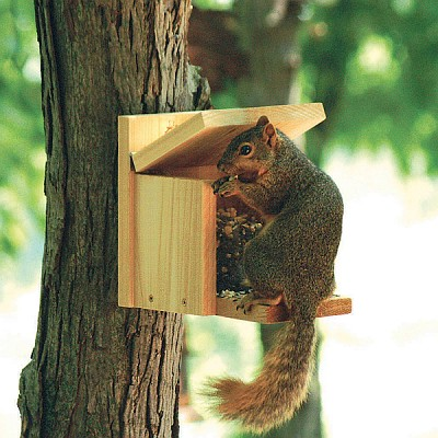 Woodlink Squirrel Munch Box Squirrel Feeder